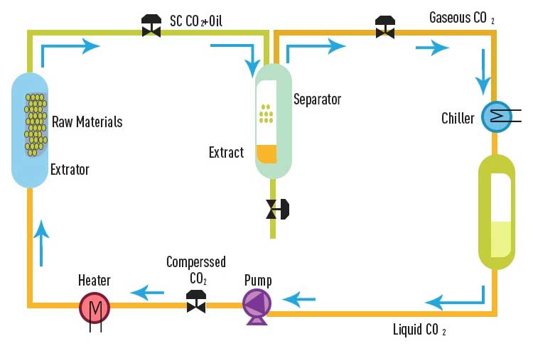 supercritical extraction system